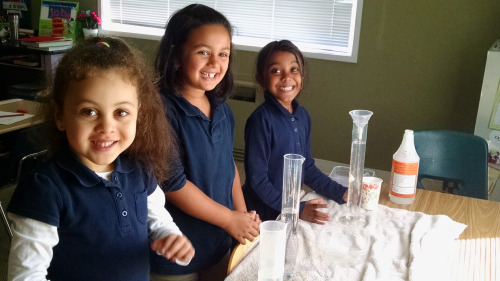 1st Grade Science